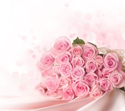 pink_rose_01_hd_pictures_166867.jpg