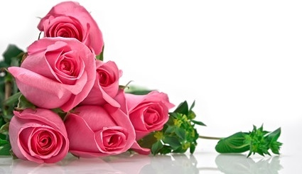 pink_roses_bouquet_picture_166711.jpg