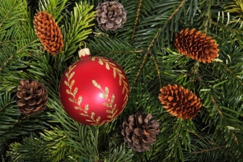 bauble_on_christmas_tree_background_187538_1.jpg