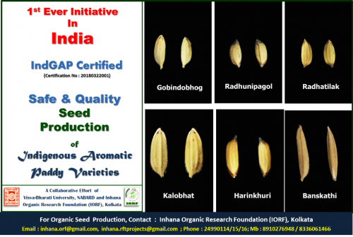 Indigenous-Aromatic-Paddy-Seed-Production.png